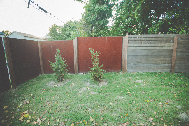 010natural_fence_2016
